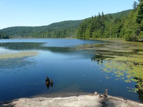 1 Bowen killarney lake