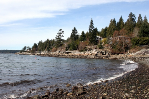 bowen-island-seashore
