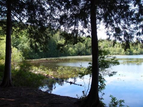 bowen-killarney-lake