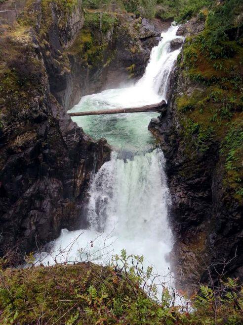 little-qualicum-falls