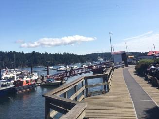 saltspring-harbour